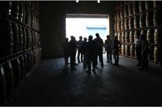 Brugal Rum Puerto Plata