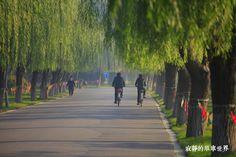 寂靜的單車世界: 單車環中國第81天 唐山到寶坻