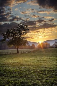 Cades Cove, in the Smoky Mountains. Gorgeous area between the mountains. We drive it every year. Lots of wildlife and beautiful scenery. ◉ pinned by http://www.waterfront-properties.com/
