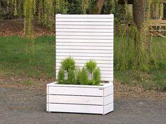 Sichtschutz mit Pflanzkasten aus Holz, Länge: 112 cm, Höhe: 180 cm, Farbe: Transparent Geölt Weiß