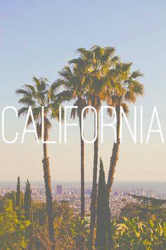 California | love | palm trees | beautiful | landscape