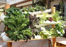 hydroponics - pipes and gutters