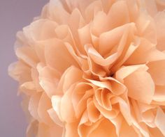 1 Salmon Tissue Paper Pom Pom  Wedding Decoration  by PaperPomPoms