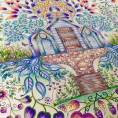 Johanna Basford | Picture by Gundi | Colouring Gallery
