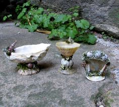 Fairy bathroom set made from shells … Mini Fairy Garden, Gnome Garden, Fairy Gardening, Indoor Gardening, Garden Terrarium, Succulents Garden, Succulent Planters, Hanging Planters, Cactus Plants