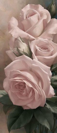 Roses in bloom My Flower, Pretty Flowers, Flower Art, Cactus Flower, Exotic Flowers, Purple Flowers, Colorful Roses, Paper Flowers, Arte Floral