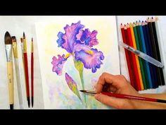Iris Watercolor Pencil Drawing and Painting Tutorial // December Smart Art Box. Link download: http://www.getlinkyoutube.com/watch?v=UGuxU--4jPA