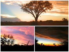 DayTreasure: Royal Madikwe - Madikwe Game Reserve Game Reserve, Celestial, Sunset, Outdoor, Travel, Sunsets, Outdoors, Outdoor Living, Garden