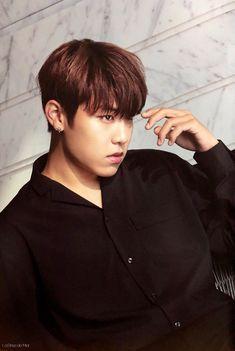 Fandom, Lee Daehwi, Ong Seongwoo, One Summer, Kim Jaehwan, Ha Sungwoon, Jinyoung, South Korean Boy Band, New Music
