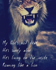 My God's not dead he's surely alive He's living on the inside roaring like a lion!!! Love this song:)