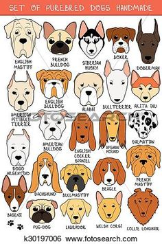 Set of 24 colored dogs different breeds handmade. Icons with dogs. Sketch of animals. Set of isolated dogs for design. Bulldog and Animal Sketches, Animal Drawings, Dog Sketches, Dog Quilts, Doodle Dog, Felt Dogs, Dog Crafts, Dog Illustration, Illustrations