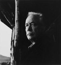W. G. Sebald -   German writer and academic.