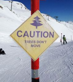 trees don't move Funny Road Signs, Funny Memes, Hilarious, Funny Fails, You Dont Say, Funny Photos, Dumb And Dumber, I Laughed, Laughter