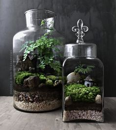 Woodland Terrarium Garden with Miniature House and Fleur de Lis Finial