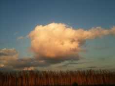 Cloud pictures. Taken by Emil and myself