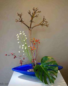 Paisaje con flor seca de pitera, escaramujo, philodendro y tanacetum