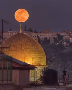 Dome of the Holly Rock - Jerusalem- Palestine Beautiful Moon, Beautiful World, Beautiful Places, Jerusalem Travel, Terra Santa, Naher Osten, Dome Of The Rock, Israel Palestine, Palestine Quotes
