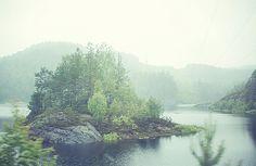 erbea: byChristina Nelson on Flickr.