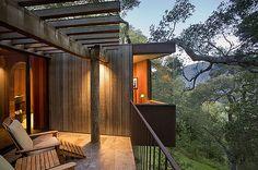 Najpiękniejsze hotele na drzewach