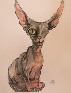 """""""Basic"""" Custom Illustration: Taco the One-Eyed Grey Sphynx – Canine Caricatures"""