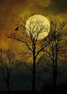 Indian Summer Moon