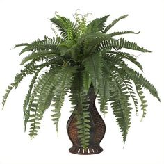 Nearly Natural Boston Fern with Urn Silk Plant ($69) ❤ liked on Polyvore featuring home, home decor, floral decor, nearly natural silk plants, nearly natural silk flowers and nearly natural
