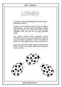 Encyklopédia zvierat - 22 zvierat - Aktivity pre deti, pracovné listy, online testy a iné Education, School, Onderwijs, Learning