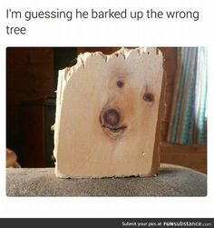 Have a punny post