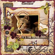 Home Again - Scraps Of Darkness - Scrapbook.com (Don't have a cat but I love this design)
