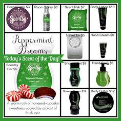 Peppermint Dreams items can be purchased on my website: www.ericagonzalez.scentsy.us Follow me on Facebook:  https://www.facebook.com/SavvySweetScentsbyErica