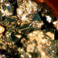 Hetaerolite. Mohawk Mine, Mohawk Hill, Clark Mountain District, Clark Mts, San Bernardino Co., California, USA Taille=~0.6 mm Collection et photo © 2003 Robert O. Meyer
