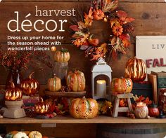 harvest decor - Harvest Decorations