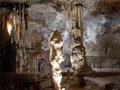 Slovinsko môže ponúknuť a ďalšie krásy prírody - kvapľové jaskyne. Vy navštívite tie najslávnejšie Postojna jama
