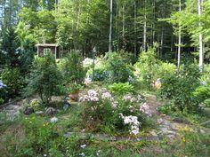山庭vol.7 - 山の花庭
