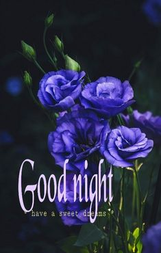 Good Night Quotes Images, New Good Night Images, Good Night I Love You, Good Night Prayer, Good Night Blessings, Good Night Wishes, Good Night Sweet Dreams, Good Morning Good Night, Sunday Images