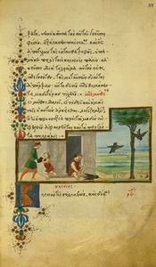 The jackdaw and the pigeons NYPL