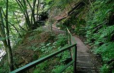 Rungo trasy: Vydejte se v našich stopách údolím Jizery a vyhrajte - iDNES.cz
