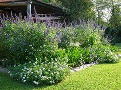 En el jardin: Jardín