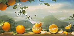 Kevin Sloan.jpg 800×394 pixels