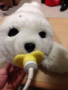 Robotic seals comfort dementia patients but raise ethical concerns