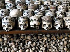 Discover Hallstatt Charnel House in Hallstatt, Austria: An Austrian house of bones filled with hundreds of intricately painted skulls. Skull Decor, Skull Art, Skull Painting, Catacombs, Historical Artifacts, Good Friday, Skull And Bones, Memento Mori, Antique Art