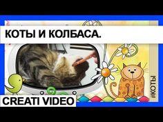 Видеоклип Коты и колбаса. Cерия 19. Видео-клип Колбаса и коты