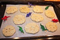 Wooloo | Des biscuits de paléontologues