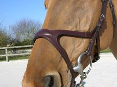 X-Fit Anatomic Bridle - an innovative, forward thinking bridle, designed with your horses upmost comfort in mind. This bridle has it all! Comfort, quality, incr