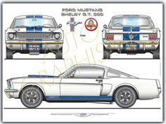 Automobiles - Gerhal272 - Ford Mustang Shelby GT 350 Ford Mustang Shelby Gt, Ford Mustangs, Mustang Gt 350, Automobile, Classic Race Cars, Cool Wall Art, Car Drawings, Top Cars, Cars And Motorcycles