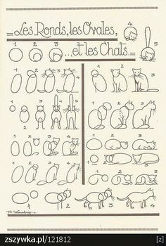 dessiner un chat..