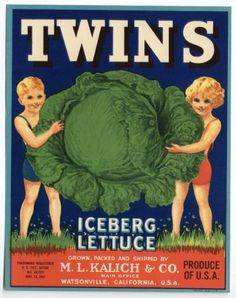 TWINS Vintage Vegetable Crate Label