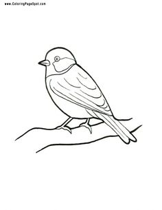 Birdorable coloring pages cute block patterns for Finch coloring page
