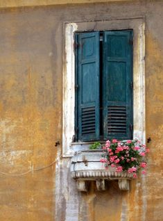 Window with flowers and blue shutters
