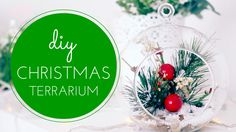 DIY Christmas Terrarium :)  Tutorial here:  https://www.youtube.com/watch?v=oJLbmND7zO8
